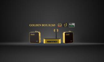 Golden Box H.265